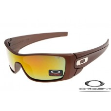 553ab9ede2 Cheap Knockoff Oakley Fuel Cell Sunglasses Brown F..